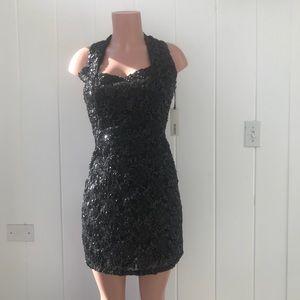 BB Dakota NWT.  Special occasion dress.